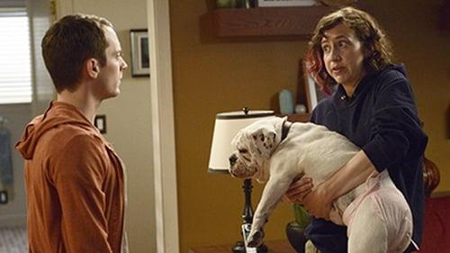 Wilfred: Season 3 – Episode Stagnation