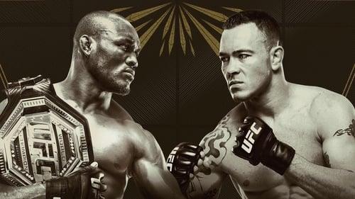 UFC 245: Usman vs. Covington (2019)