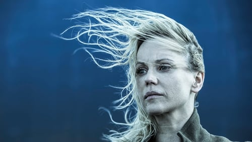 Watch the Latest Episode of The Bridge (S4E08) Online