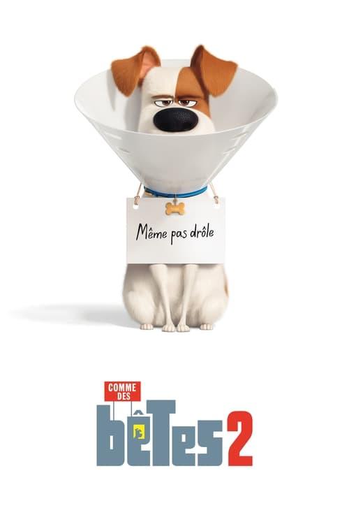 Voir Comme des bêtes 2 Film en Streaming VF