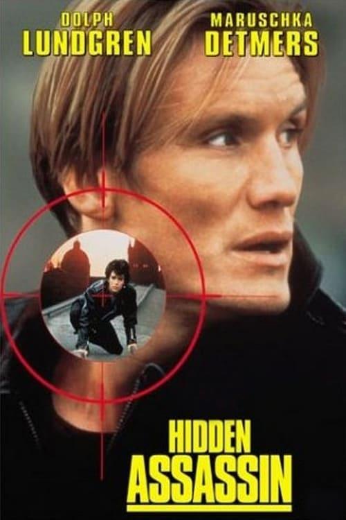 The poster of Hidden Assassin