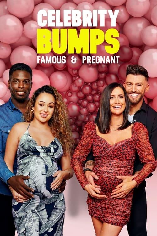 Celebrity Bumps: Famous & Pregnant