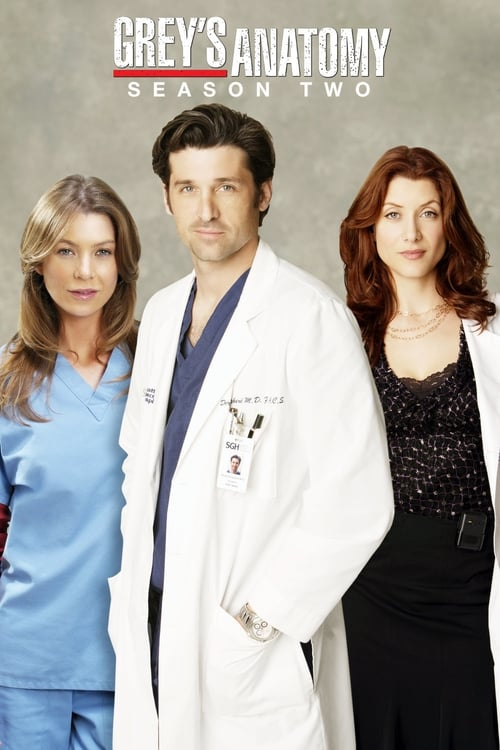 Grey X27 S Anatomy: Season 2