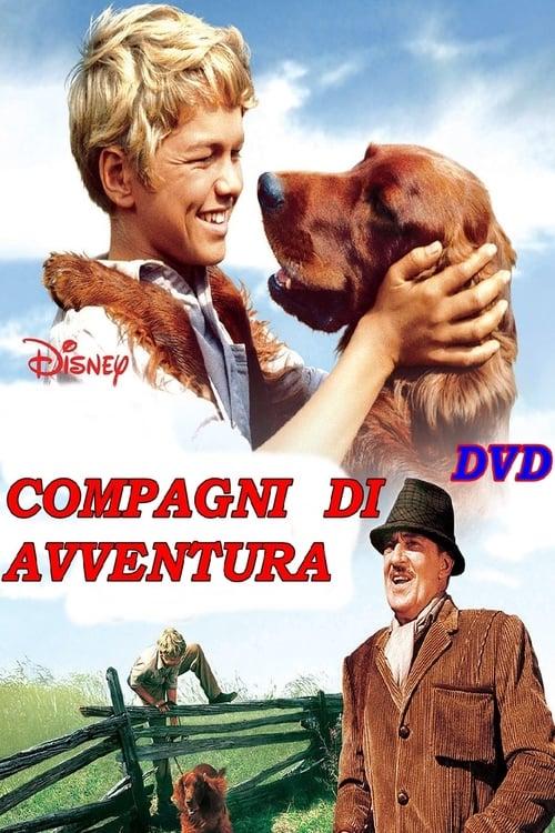 Compagni d'avventura (1962)