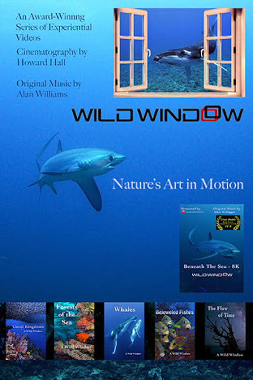 Wild Window: Bejeweled Fishes ( Wild Window )