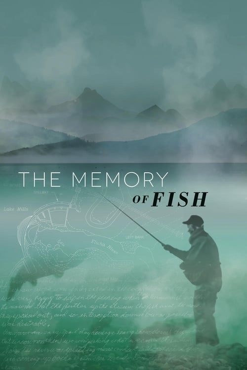 Film The Memory of Fish En Ligne