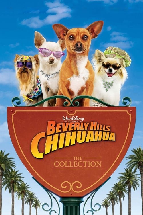 chihuahua movies beverly hills chihuahua collection 2008 2012 the movie 9552
