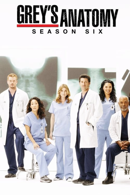 Grey X27 S Anatomy: Season 6