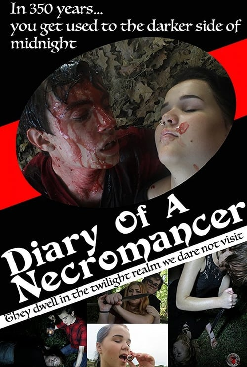 Mire Diary of a Necromancer En Buena Calidad