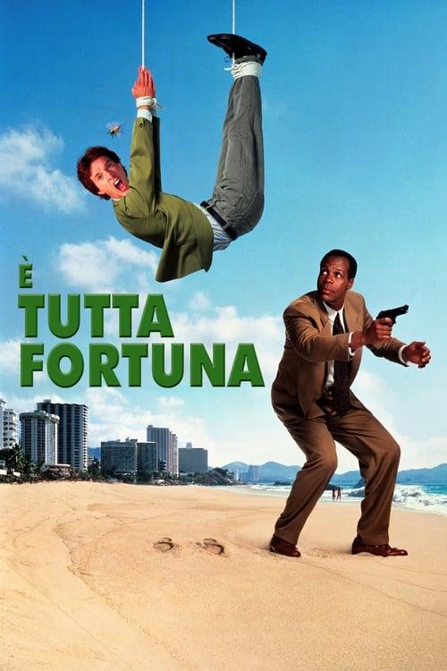 É tutta fortuna (1991)