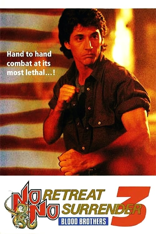No Retreat, No Surrender 3: Blood Brothers on lookmovie