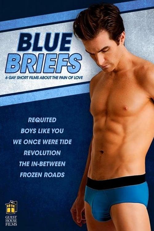 Blue Briefs (2012) Poster