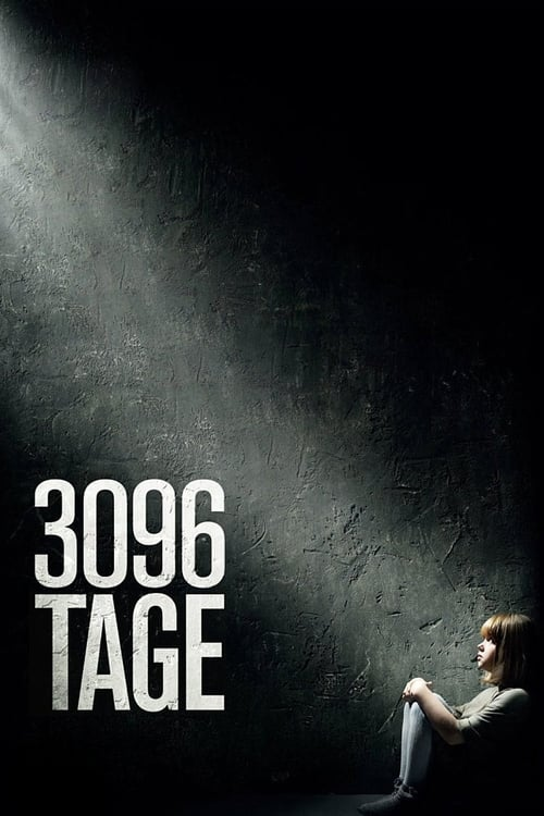 Poster von 3096 Tage
