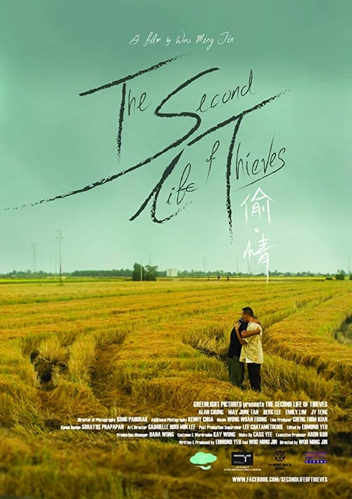 The Second Life of Thieves (2014)
