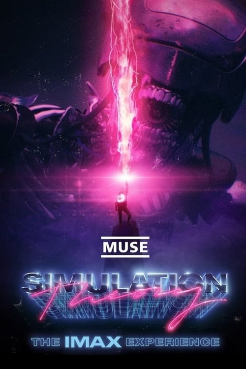 Pirate Bay Simulation Theory Film
