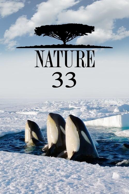 Nature: Season 33