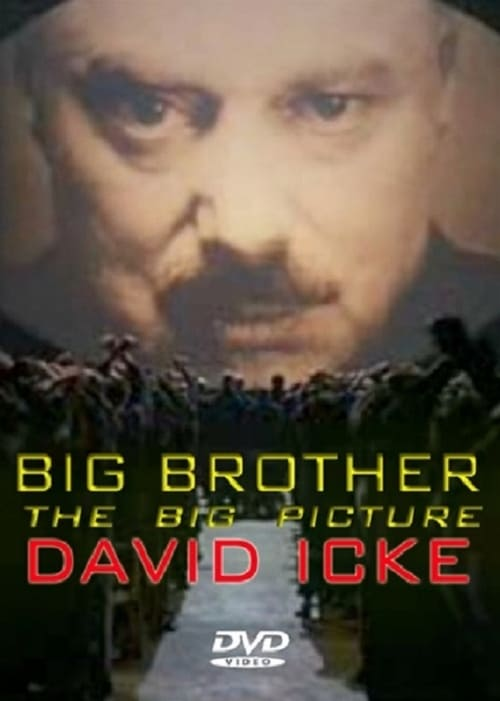Big Brother: The Big Picture (2008)