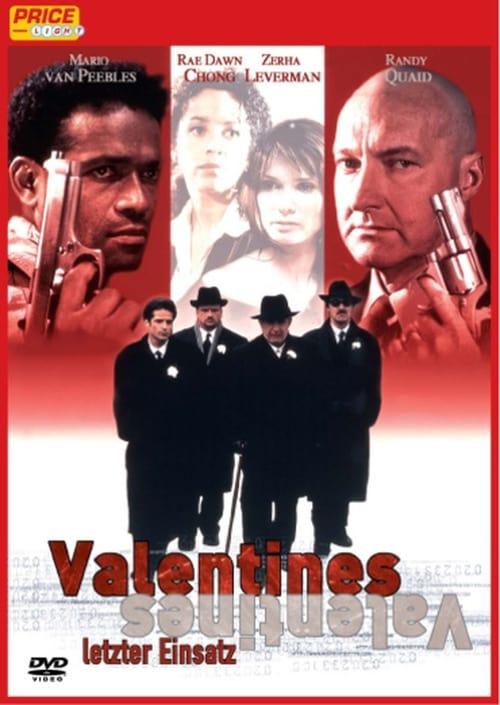 Mira Valentine's Day En Buena Calidad Hd 720p