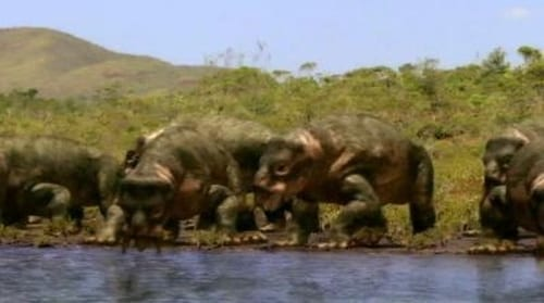 Watch Walking with Dinosaurs S1E01 Online