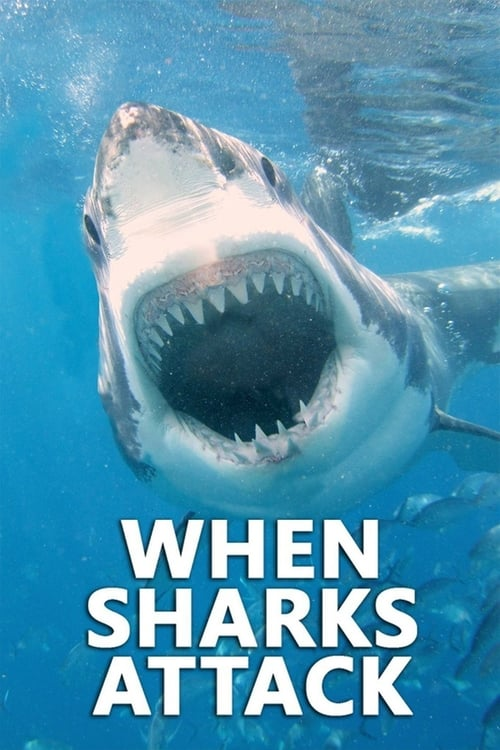 When Sharks Attack (2013)