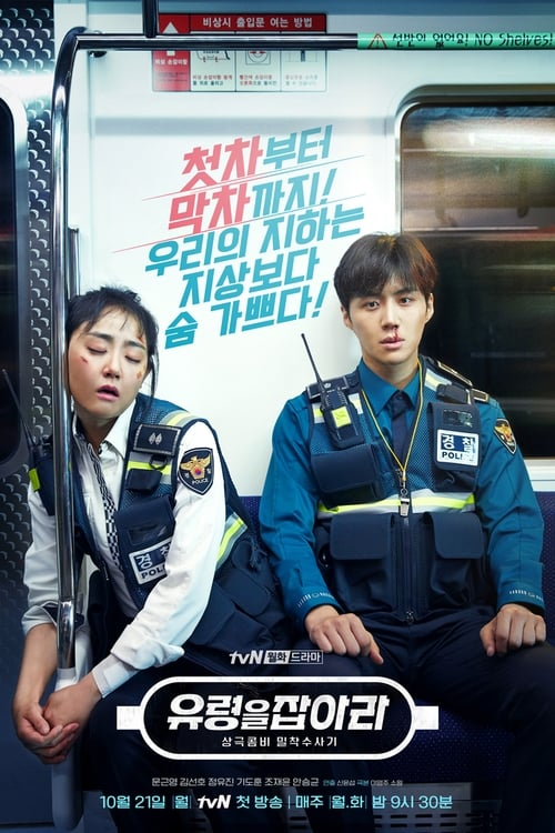 Nonton Drama Korea Catch The Ghost (2019)