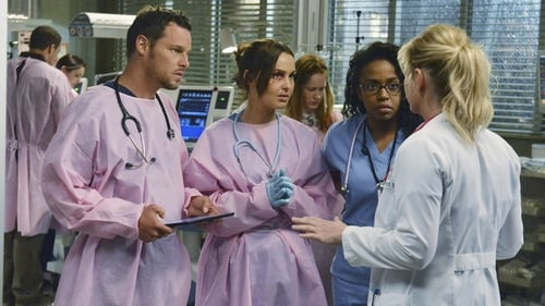 Grey's Anatomy - Season 9 - Episode 24: Perfect Storm