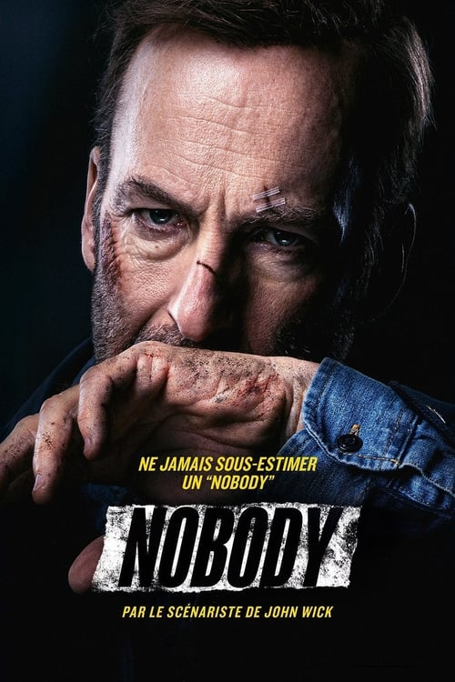 [FR] Nobody (2021) streaming vf