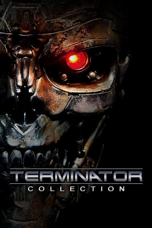 torrent terminator salvation hindi