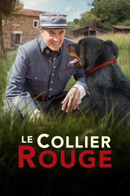 Regarder $ Le Collier rouge Film en Streaming VF