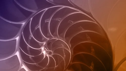 NOVA: Season 42 – Episode The Great Math Mystery