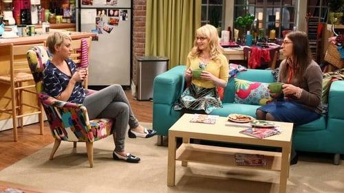 The Big Bang Theory - Season 8 - Episode 7: The Misinterpretation Agitation