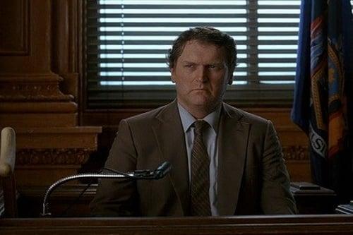 Law & Order: Season 4 – Épisode Volunteers