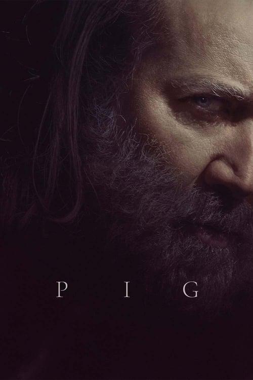 Grootschalige poster van Pig