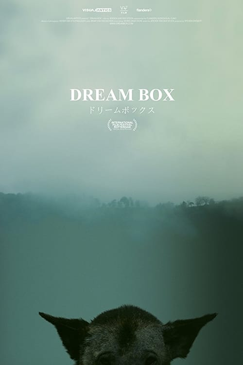 Ver pelicula Dream Box Online