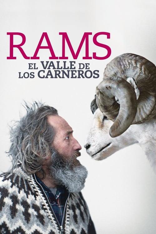 Película Rams (El valle de los carneros) Gratis En Español