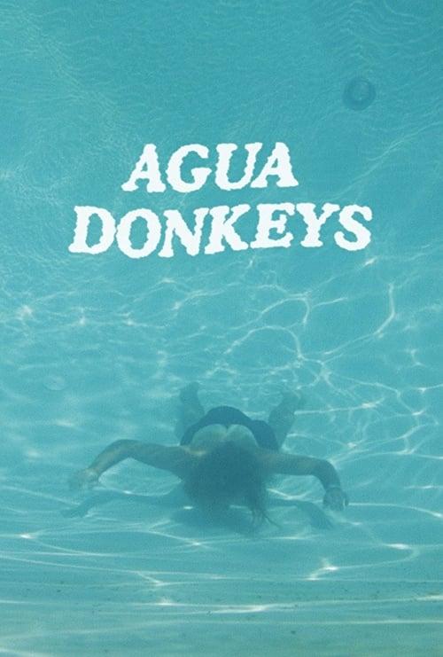 Agua Donkeys (2018)