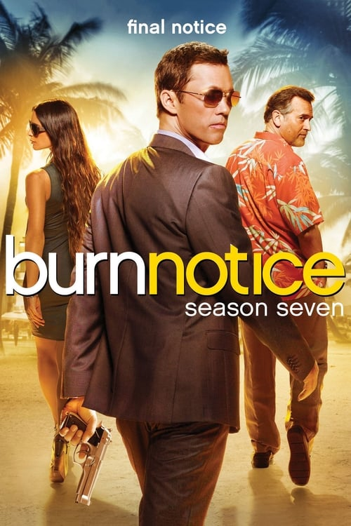 Burn Notice Stream Deutsch