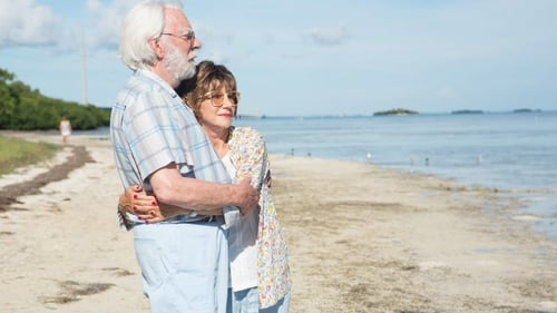 Watch Here The Leisure Seeker