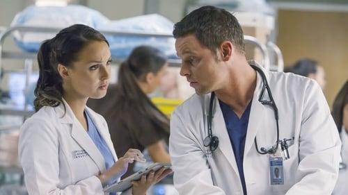 Grey's Anatomy - Season 11 - Episode 9: Where Do We Go from Here?