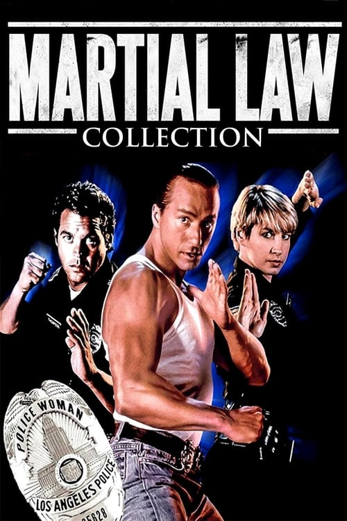 martial law 2 undercover cast