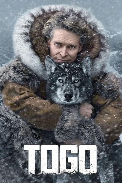 Download Togo (2019) Movie Free Online