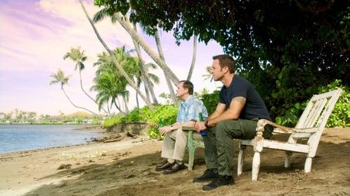 Hawaii Five-0: Season 5 – Episod Inā Paha (If Perhaps)