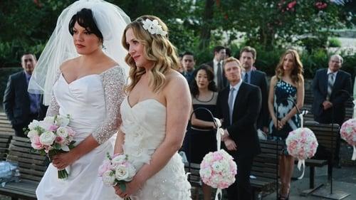 Grey's Anatomy: Season 7 – Episode White Wedding