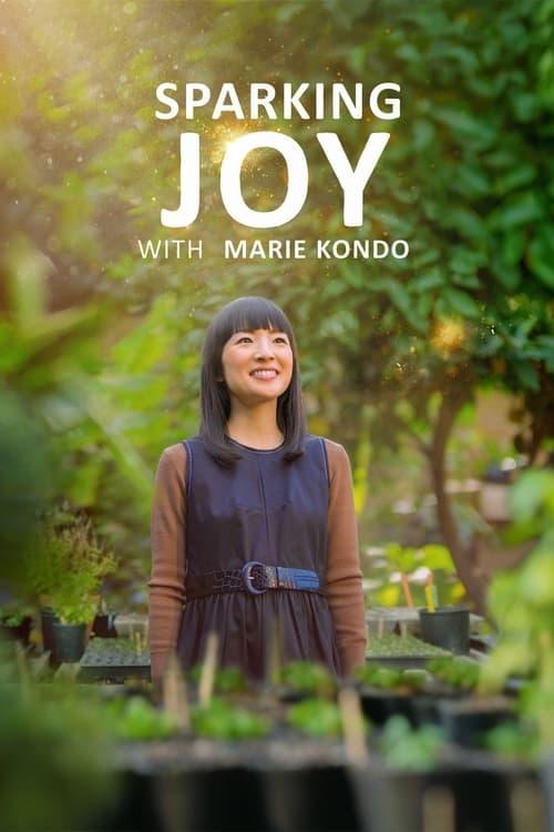Assistir A Magia do Dia a Dia com Marie Kondo