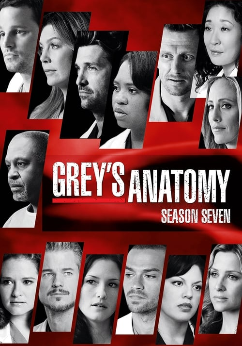 Grey S Anatomy: Season 7
