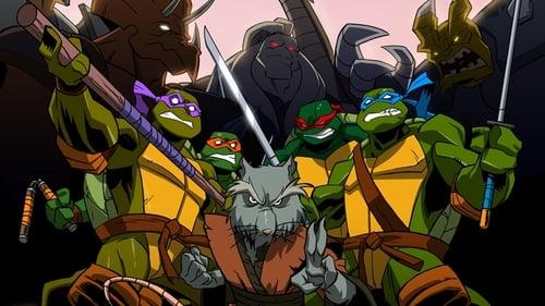 A tini nindzsa teknőcök új kalandjai