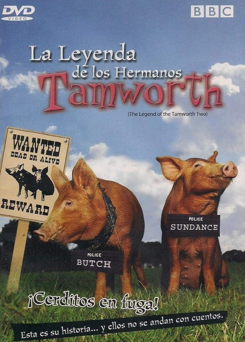 Assistir The Legend of the Tamworth Two Grátis
