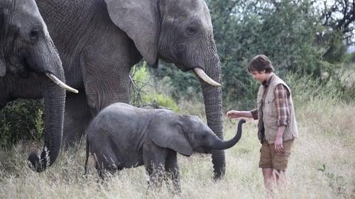An Elephant's Journey (2017)