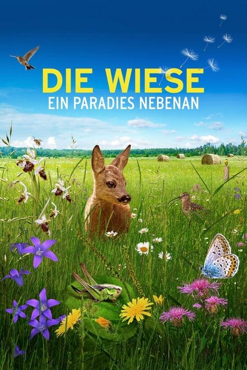 Poster von Die Wiese: Ein Paradies nebenan