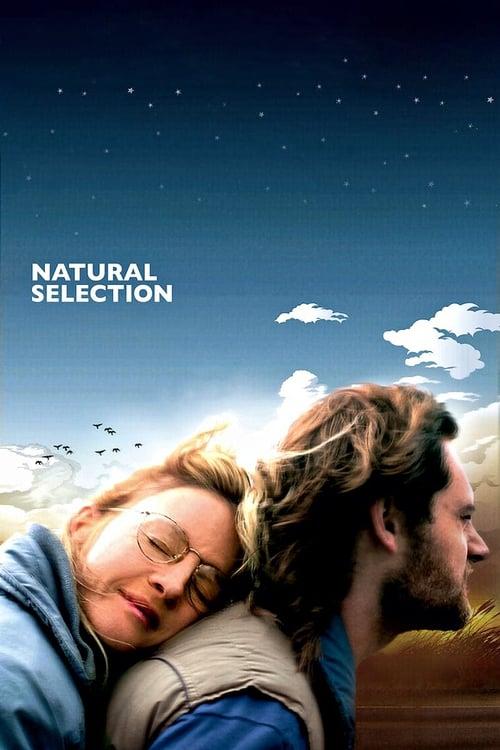 Película The Viking En Buena Calidad Hd 1080p